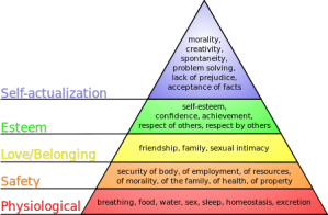 Maslow's Heirarcy of Needs