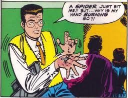 Peter Parker gets bitten by a radioactive spider