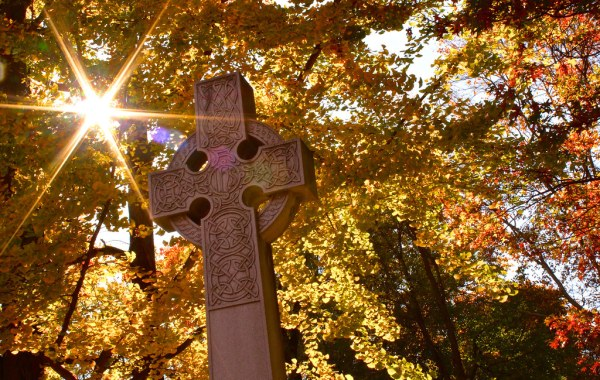 A stone cross engraved with celtic imagery, in front of a golden canopy of leaves with the sun streaming through the leaves.
