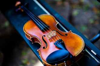 Are these good violin strings, or defunct strings? Do you know how to replace them?